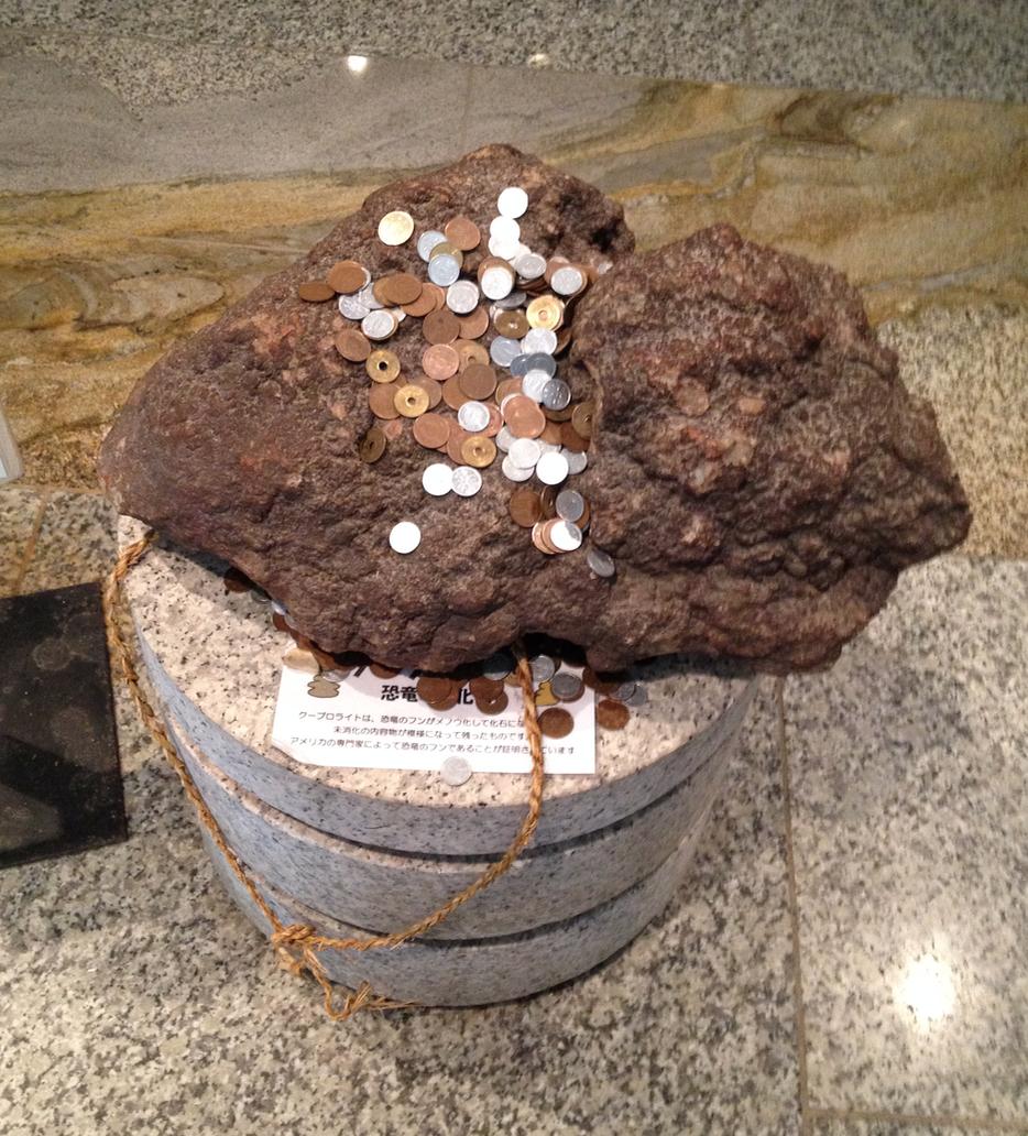 うんこ の 化石