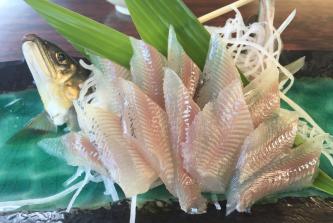 北関東一の清流・大芦川で鮎を食べよう 鹿沼観光下沢ヤナ(鹿沼市)